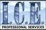 I.C.E. Professional Services
